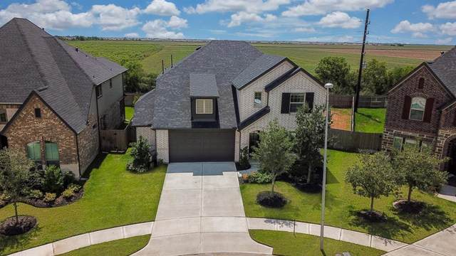 29427 Wood Lily Drive, Katy, TX 77494 (MLS #86657620) :: Lisa Marie Group | RE/MAX Grand
