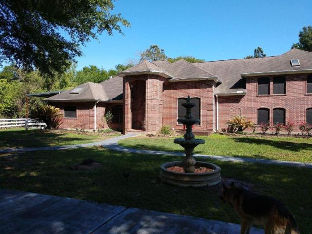 11610 Echo Spring Lane, Houston, TX 77065 (MLS #86660550) :: Texas Home Shop Realty