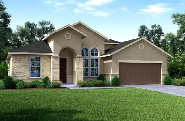 29018 Knollwood Trail Lane, Katy, TX 77494 (MLS #86683052) :: The Home Branch