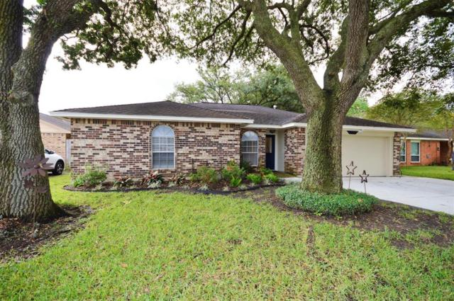 10102 Quiet Hill Road, La Porte, TX 77571 (MLS #86725925) :: The SOLD by George Team