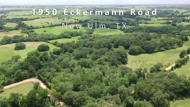 000 Eckermann Road, New Ulm, TX 78950 (MLS #86731018) :: Bray Real Estate Group