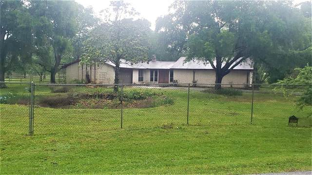 10007 Ironwood Lane, Fairchilds, TX 77469 (MLS #86745528) :: Connell Team with Better Homes and Gardens, Gary Greene