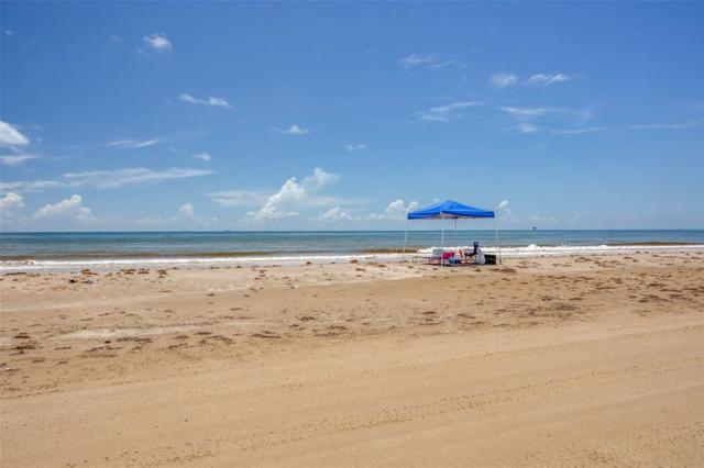 2423 Sandpiper, Crystal Beach, TX 77650 (MLS #86801333) :: Giorgi Real Estate Group