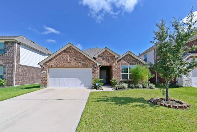 26014 Haggard Nest Drive, Katy, TX 77494 (MLS #86894069) :: The Johnson Team