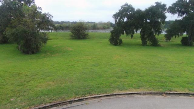 289 Twin Lakes Boulevard, West Columbia, TX 77486 (MLS #86906463) :: Ellison Real Estate Team