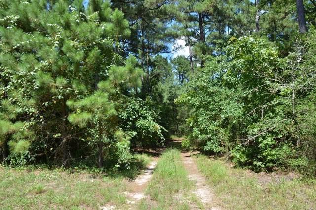 17239 Deer Run 194 Acres, Navasota, TX 77868 (MLS #86984302) :: Ellison Real Estate Team