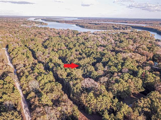 Lot 5 Post Oak Road, Trinity, TX 75862 (MLS #87056426) :: Michele Harmon Team
