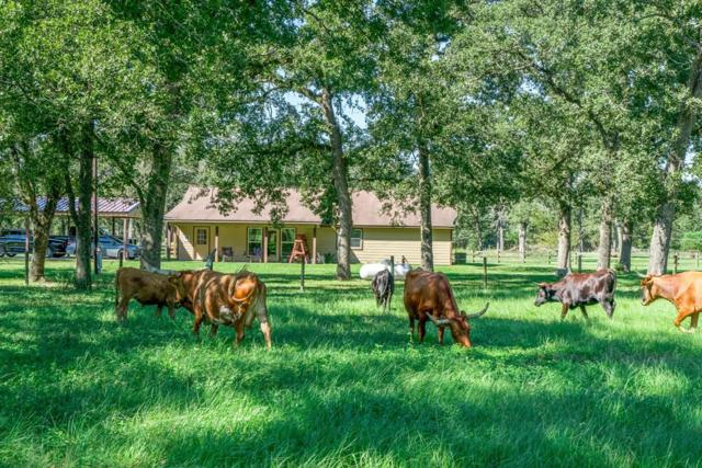 29772 Mellman, Hempstead, TX 77445 (MLS #87064561) :: Grayson-Patton Team