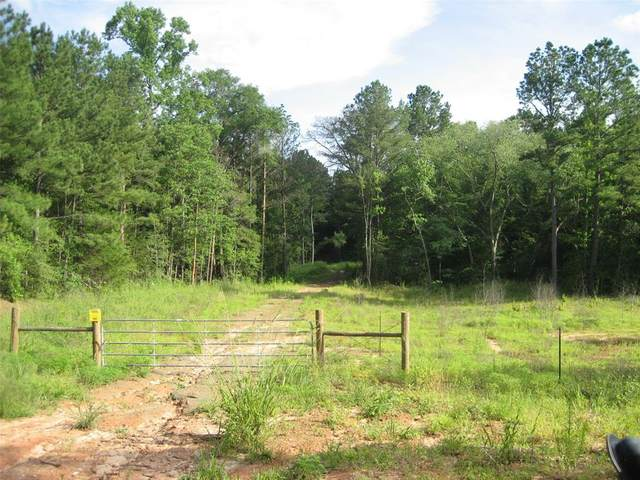 0 County Rd 1850, Grapeland, TX 75844 (MLS #87065732) :: Bray Real Estate Group