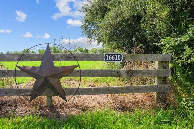 16610 Warren Ranch Road, Hockley, TX 77447 (MLS #87100234) :: The Bly Team
