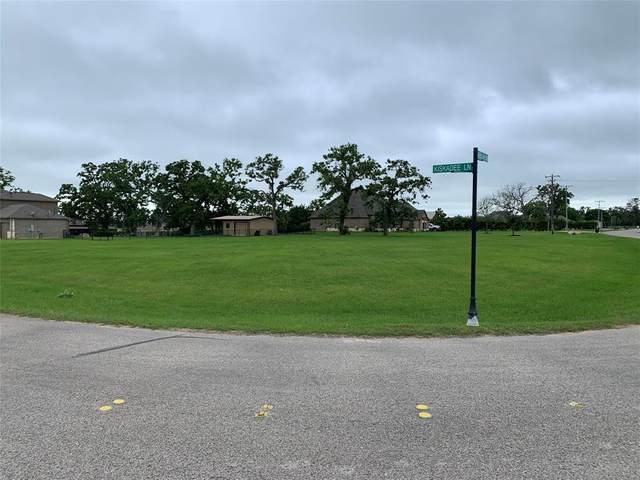 29750 Kiskadee Lane, Hockley, TX 77447 (MLS #87126347) :: The Parodi Team at Realty Associates