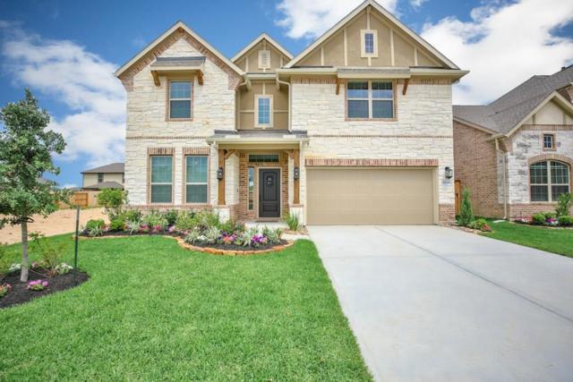 21734 Rose Maris Lane, Tomball, TX 77377 (MLS #87185487) :: Connect Realty