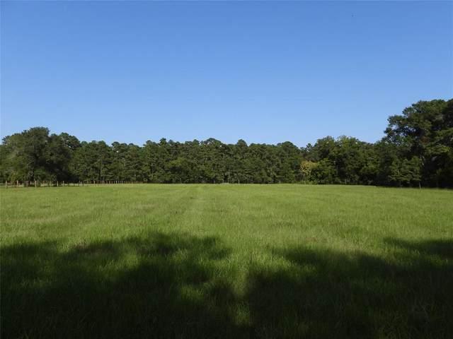 18855 Tbd 2 Bethel Road, Richards, TX 77873 (MLS #87206843) :: My BCS Home Real Estate Group