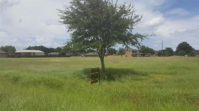 0 Crescent Cross Drive, Needville, TX 77461 (MLS #87275285) :: Texas Home Shop Realty