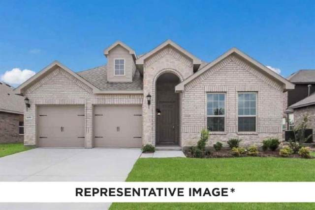 17422 Turtleweed Lane, Conroe, TX 77385 (MLS #87341619) :: The Home Branch