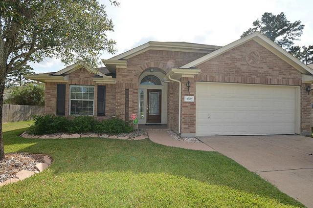 13907 Pueblo Run, Cypress, TX 77429 (MLS #87374424) :: See Tim Sell