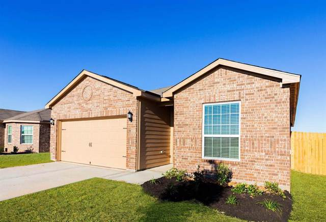 232 Elm Patch Drive, Katy, TX 77493 (MLS #8745345) :: The Parodi Team at Realty Associates
