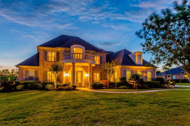 3919 Paseo Companario Drive, Richmond, TX 77406 (MLS #87466549) :: Christy Buck Team