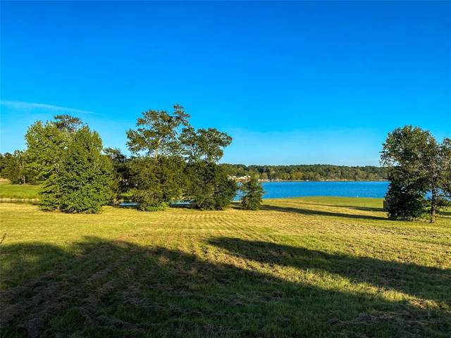 255 Peninsula Dr Drive, Livingston, TX 77351 (MLS #87570641) :: Michele Harmon Team