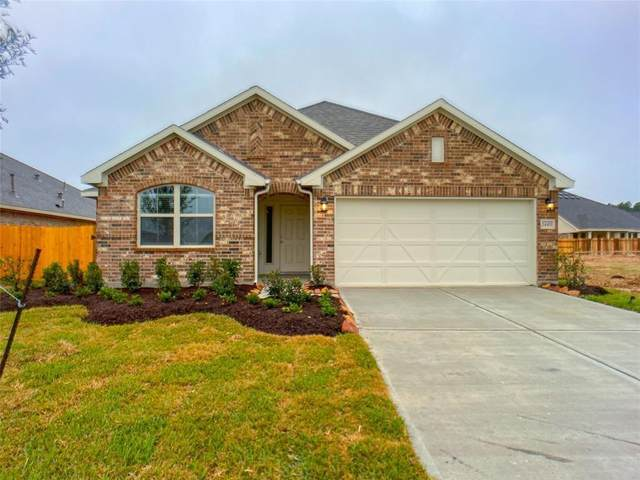 1337 Red Hills Drive, Rosharon, TX 77583 (MLS #87572368) :: The SOLD by George Team