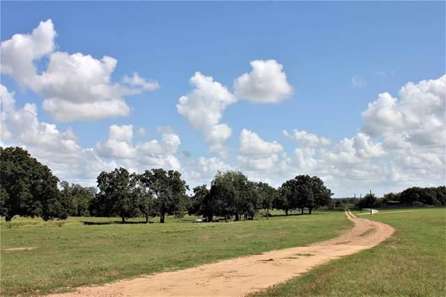 20755 Holle Lane, Washington, TX 77880 (MLS #87628295) :: The Property Guys
