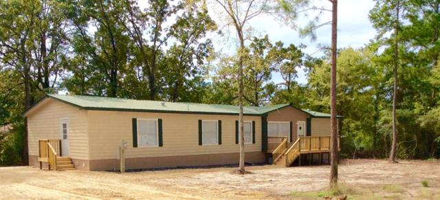 287 Pine Lane, Onalaska, TX 77360 (MLS #87670387) :: Caskey Realty
