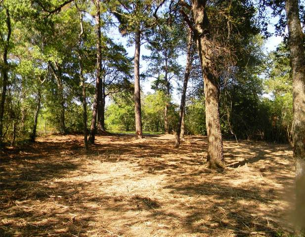 0 Old Joseph Road, Hockley, TX 77447 (MLS #87817460) :: The Sansone Group