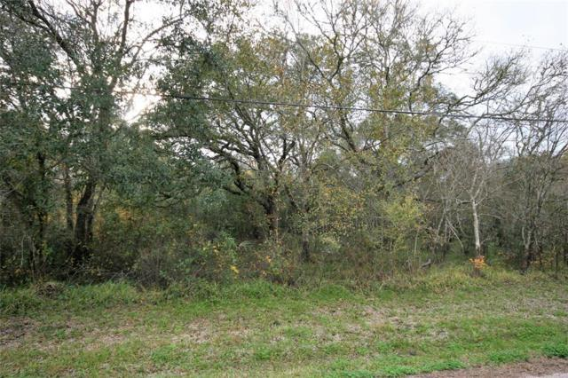 Lot 3 S Belt Drive, Brazoria, TX 77422 (MLS #87818153) :: The SOLD by George Team