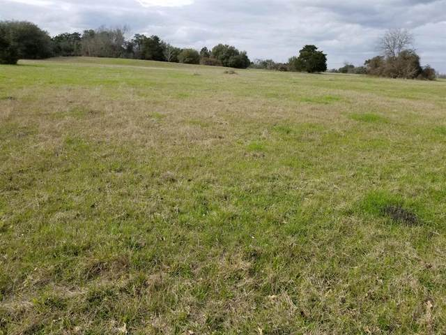 000 Andreas Road, Round Top, TX 78954 (MLS #87849330) :: The Property Guys