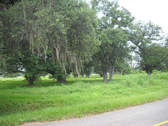 18639 Lakeland Pass, Rosharon, TX 77583 (MLS #87854571) :: Texas Home Shop Realty