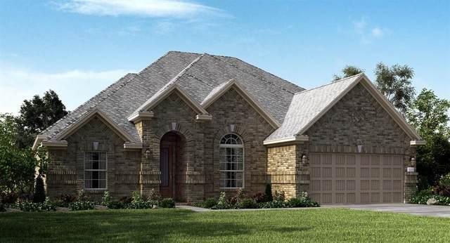 23564 Red Juniper Lane, New Caney, TX 77357 (MLS #87873999) :: The Wendy Sherman Team