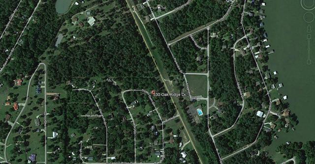 330 Oak Ridge Drive, Onalaska, TX 77360 (MLS #88061918) :: Mari Realty