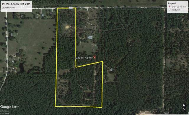 TBD County Road 212, Anderson, TX 77830 (MLS #88128539) :: The Home Branch