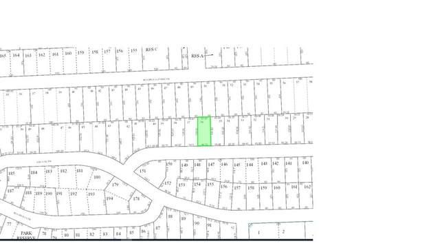 449 White Oaks Drive, Houston, TX 77336 (MLS #8815102) :: Green Residential