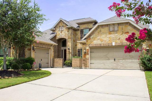 28106 Yellow Cornerstone Drive, Katy, TX 77494 (MLS #88170408) :: The Collective Realty Group