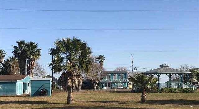 14 Marshall Johnson Avenue S, Port Lavaca, TX 77979 (MLS #88172212) :: Michele Harmon Team