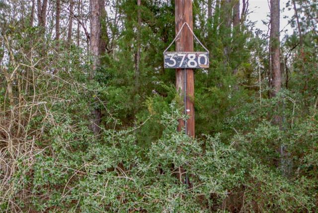 3780 Fm 356, Trinity, TX 75862 (MLS #88309328) :: Magnolia Realty