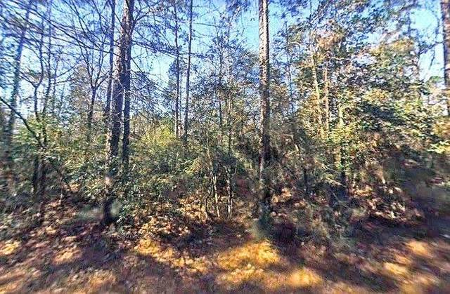 Tract 8 Massey, Conroe, TX 77306 (MLS #88339172) :: Lerner Realty Solutions