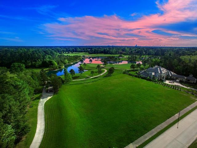 63 S Fazio Way, The Woodlands, TX 77389 (MLS #88636358) :: The Home Branch