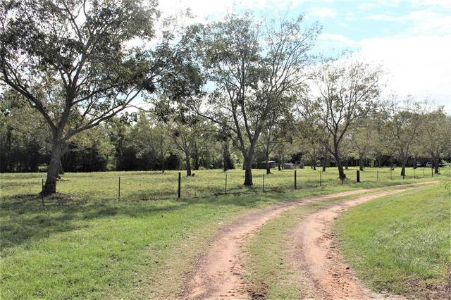 28023 Fm 1488 Stokley Dead End, Hockley, TX 77447 (MLS #88656293) :: The Queen Team