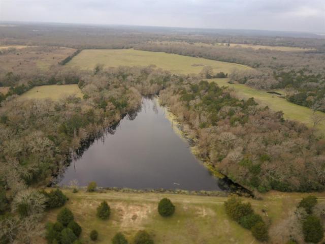 101 Us Hwy 79, Buffalo, TX 75831 (MLS #88684233) :: Fairwater Westmont Real Estate