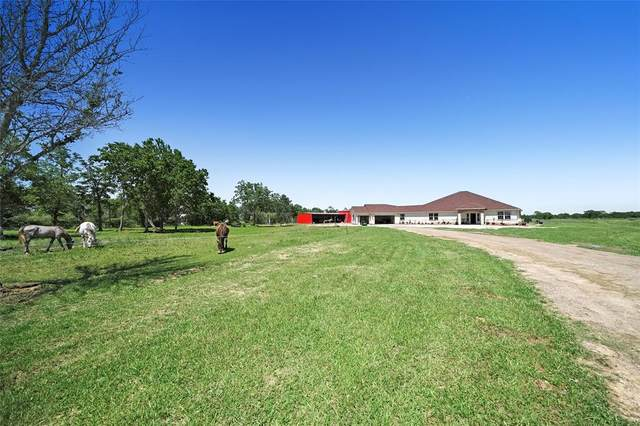 15916 Blinka Road, Waller, TX 77484 (MLS #88750332) :: The SOLD by George Team