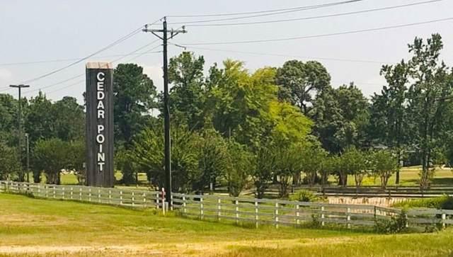 163 Oleander, Livingston, TX 77351 (MLS #8878957) :: TEXdot Realtors, Inc.
