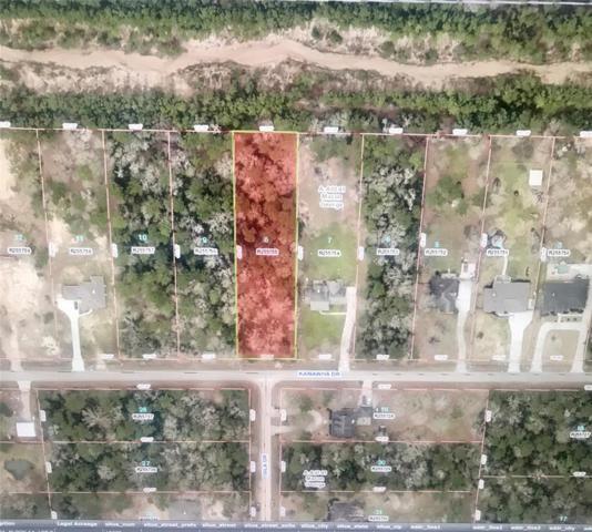 19253 Kanawha Drive, Porter, TX 77365 (MLS #88798546) :: Texas Home Shop Realty