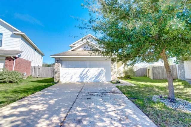 24303 Palm Cockatoo Drive, Hockley, TX 77447 (MLS #88872322) :: Texas Home Shop Realty