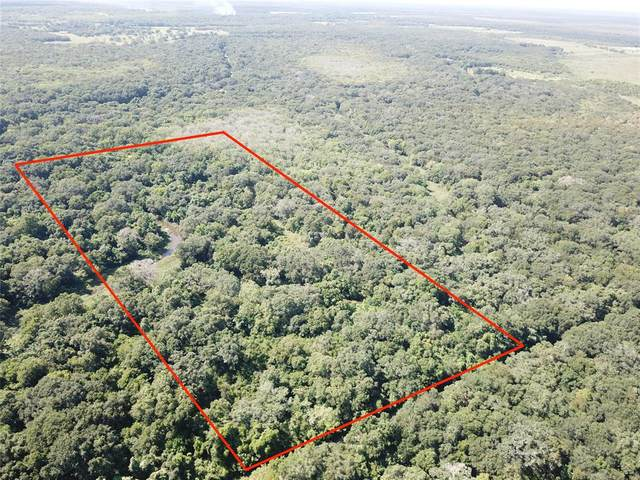 Tract 4 Private Road 648 Street, Cedar Lake, TX 77425 (MLS #88873014) :: The Freund Group