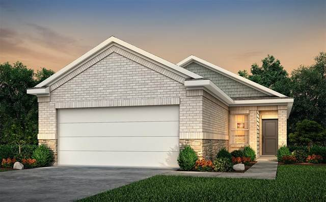 25549 Northpark Spruce Drive, Porter, TX 77365 (MLS #88920199) :: Homemax Properties