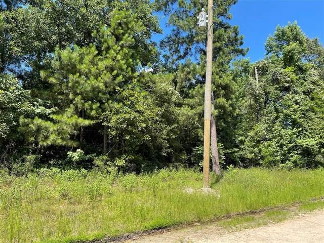 Lot 186 Buffalo Way, Trinity, TX 75862 (MLS #88937696) :: My BCS Home Real Estate Group