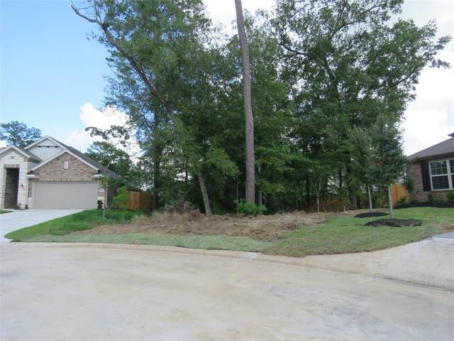 1003 Awning Court, Crosby, TX 77532 (MLS #89044948) :: Keller Williams Realty
