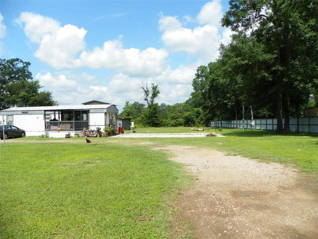 33203 Lois Lane, Magnolia, TX 77354 (MLS #89064072) :: The SOLD by George Team